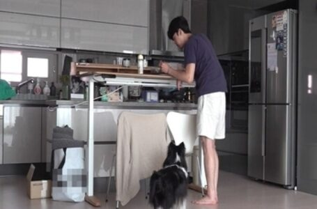 I Live Alone Episode 396 – Toast is an appetizer – Sub Indonesia.